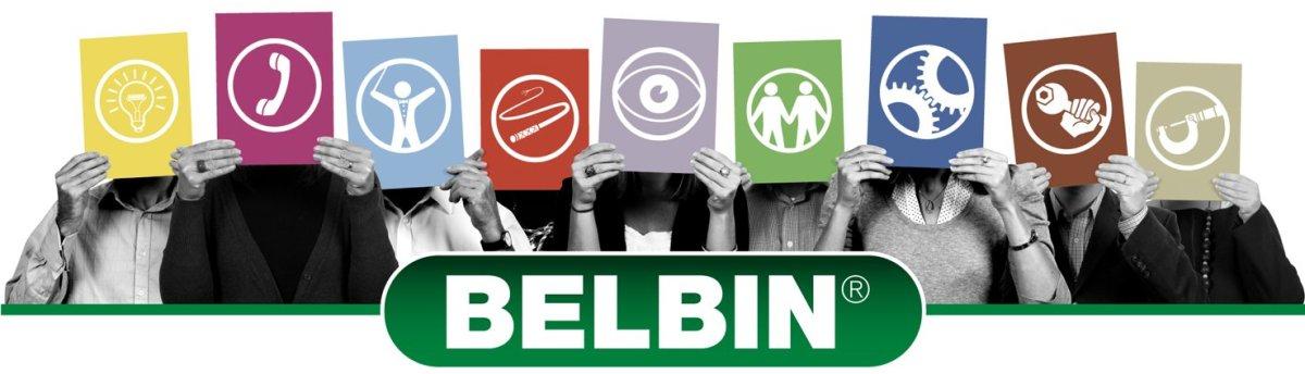 Oblikovanje in vodenje učinkovitih timov: Belbinove timske vloge