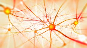 Nevrovodenje – znanost alipsevdo-znanost?
