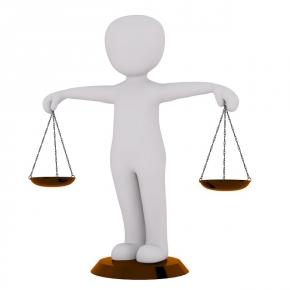 Teorija delovnih zahtev in delovnihvirov