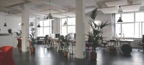 Odprte pisarne – da aline?