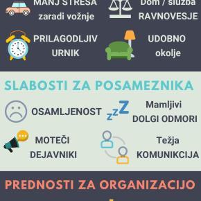 Delo doma: prednosti in slabosti za posameznika inorganizacijo